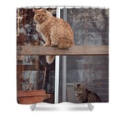 Red, Bella And Oliver Shower Curtain