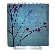 Red Berries Blue Sky Shower Curtain