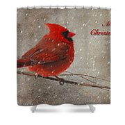 Red Bird In Snow Christmas Card Shower Curtain by Lois Bryan