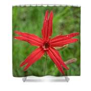 Fire Pink Shower Curtain