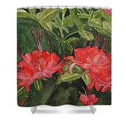 Red Blooms On The Parkway Shower Curtain
