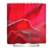 Red Blossom 3 Shower Curtain