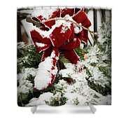 Red Bow On Pine Bough Shower Curtain