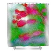 Red Buckeye Shower Curtain