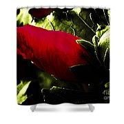 Red Bud On Green Background Shower Curtain