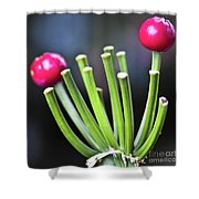 Red Bullets Shower Curtain