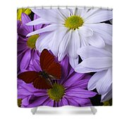 Red Butterfly On Assorted Mums Shower Curtain