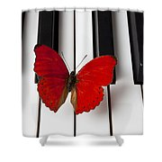 Red Butterfly On Piano Keys Shower Curtain by Garry Gay