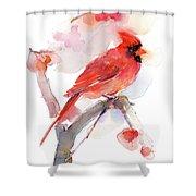 Red Cardinal Shower Curtain