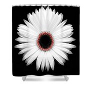 Red Center Daisy Shower Curtain