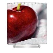 Red Cherry Shower Curtain