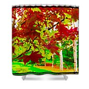 Red Chinese Maple Leaf's Shower Curtain