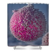 Red Christmas Decoration With Frost In Winter Shower Curtain