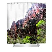 Red Cliffs Zion National Park Utah Usa Shower Curtain