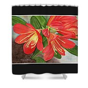 Red Clivias - Watercolor Shower Curtain