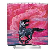 Red Cloud Horse Shower Curtain