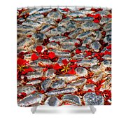 Red Cobblestone Road Shower Curtain