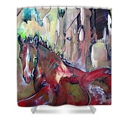 Red Colt Shower Curtain