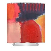Red Combination Shower Curtain