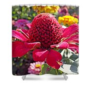 Red Cone Flower Shower Curtain