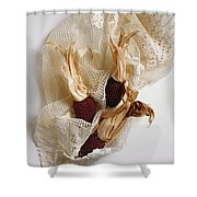 Red Corn On The Cob And Lace Shower Curtain