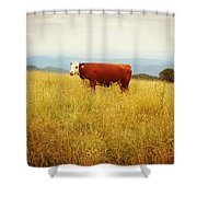Red Cow On The Blue Ridge Shower Curtain