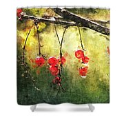 Red Currants Shower Curtain