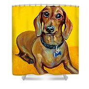Red Dachshund - Tigger Smiles Shower Curtain