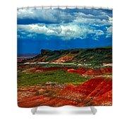 Red Desert Shower Curtain