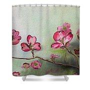 Red Dogwood - Cherokee - Springtime Shower Curtain