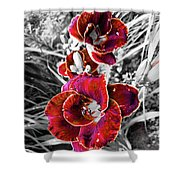 Red Double Lily Shower Curtain