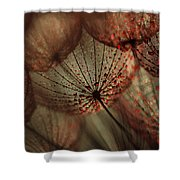 Red Drops Shower Curtain