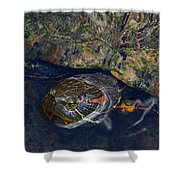 Red Eared Slider Turtle Shower Curtain