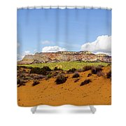 Red Earth Shower Curtain