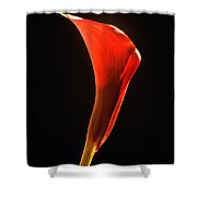 Red Essence Shower Curtain