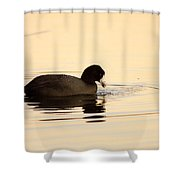 Red Eye Flight Shower Curtain