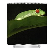 Red Eye Frog Shower Curtain
