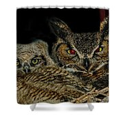 Red Eyed Mama And Baby Horned Owls Shower Curtain