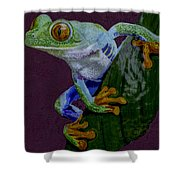 Red Eyed Tree Frog Original Oil Painting 4x6in Shower Curtain