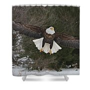 Red Feather Lift Off Shower Curtain
