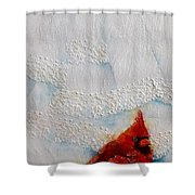 Red Feathers Shower Curtain