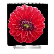 Red Fleur Shower Curtain