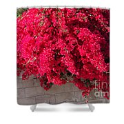 Red Flower Bushes Shower Curtain