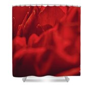 Red Flower Detail Shower Curtain