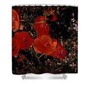 Red Flowers 6 Shower Curtain