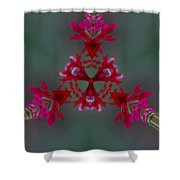 Red Flowers Abstract Shower Curtain