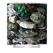 Red Flowers And Rocks Shower Curtain
