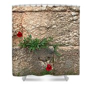 Red Flowers In Ruins Shower Curtain