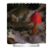Red Forest Mushroom Shower Curtain