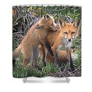 Red Fox Mama's Love Bite Shower Curtain